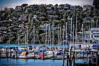 Tiburon (2 of 3)